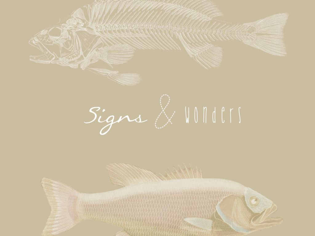 Signs and Wonders_v1